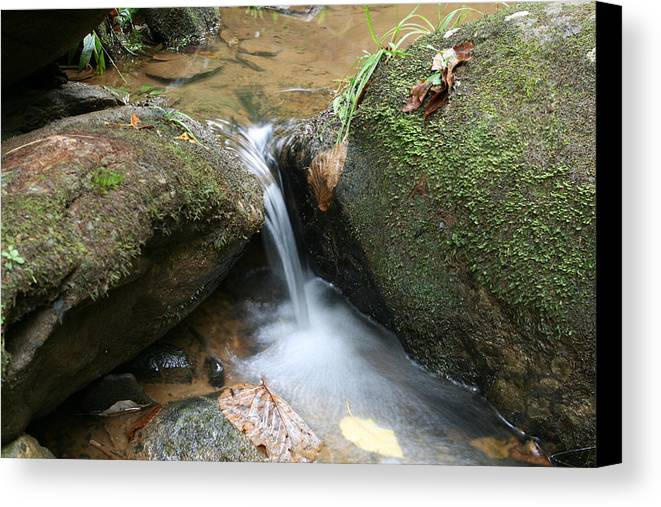 Waterfall Canvas Print featuring the photograph Water At Work by Walt Reece