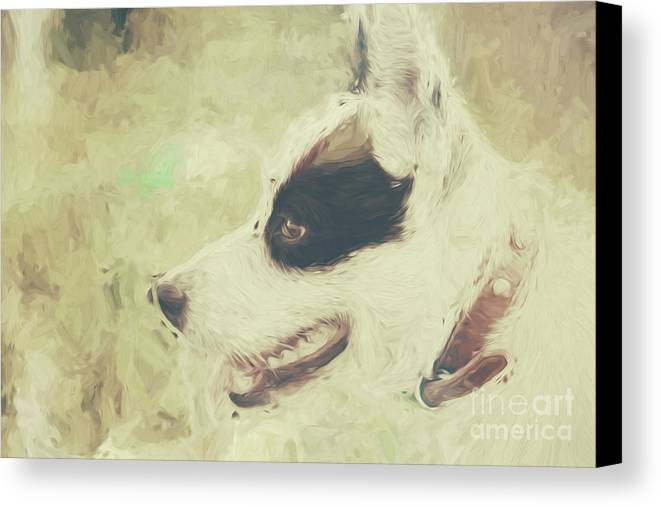 Water Colour Art Of An Adorable Puppy Dog Canvas Print