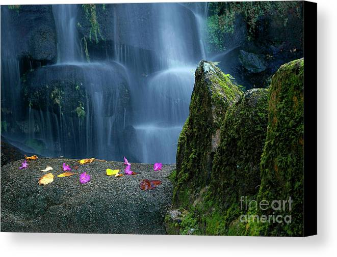 Autumn Canvas Print featuring the photograph Waterfall02 by Carlos Caetano