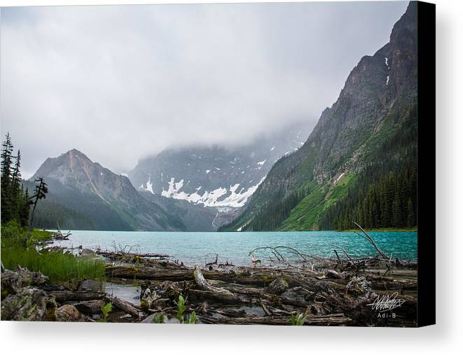 Nature Canvas Print featuring the photograph Waterfowl Lakes by Adnan Bhatti