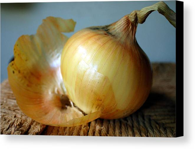 Food Canvas Print featuring the photograph We All Have Layers by Heather S Huston