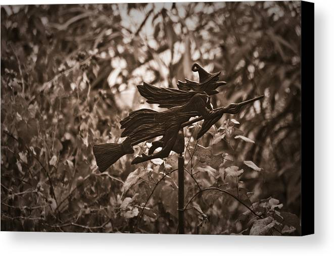 Weather Canvas Print featuring the photograph Weather Vane by Teresa Mucha