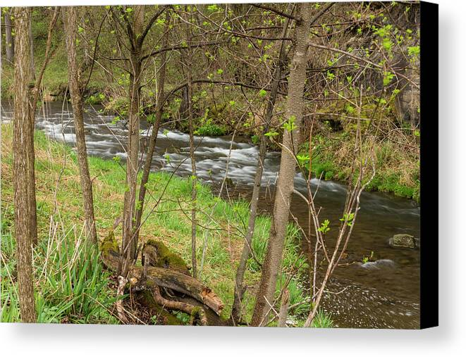 River Canvas Print featuring the photograph Whitewater River Spring 43 by John Brueske