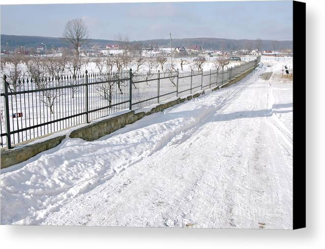 Winter Canvas Print featuring the photograph Winter Day by Camelia C