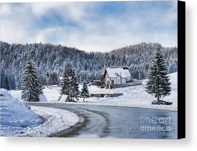Winter Canvas Print featuring the photograph Winter Lands by Gabriela Insuratelu