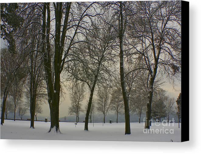 Park Canvas Print featuring the photograph Winter Wonderland by Idaho Scenic Images Linda Lantzy