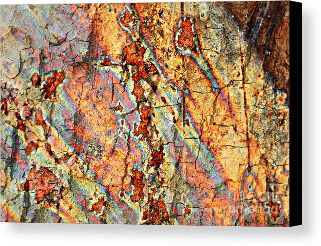 Rust Canvas Print featuring the photograph Wood And Rust by Carol Groenen