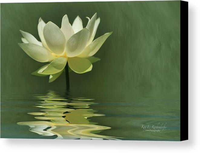Water Lily Canvas Print featuring the photograph Yellow Lily With Reflections by Kay Kochenderfer