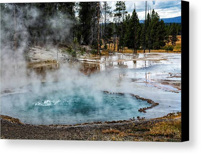 Yellowstone Canvas Print featuring the photograph Yellowstone Colors #2 by Scott Read