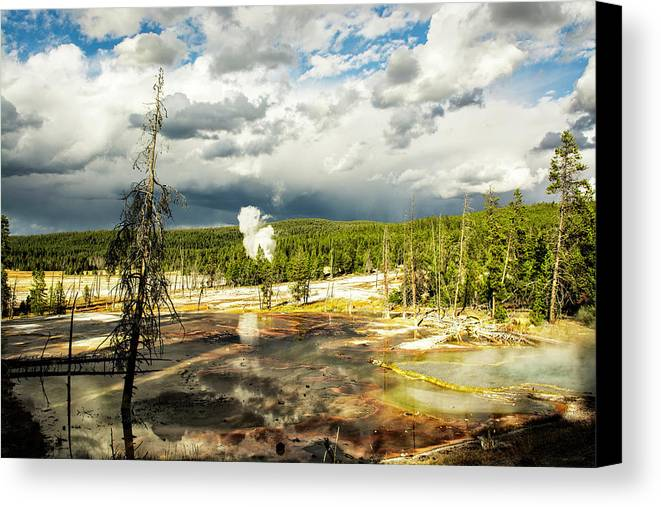 Yellowstone Canvas Print featuring the photograph Yellowstone Colors #3 by Scott Read
