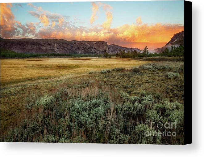 Yellowstone Canvas Print featuring the photograph Yellowstone Sunrise by Todd Bielby