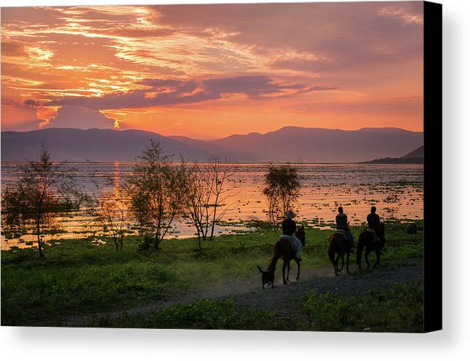 Horses Canvas Print featuring the photograph Lake Chapala Sunset And Horses by Dane Strom