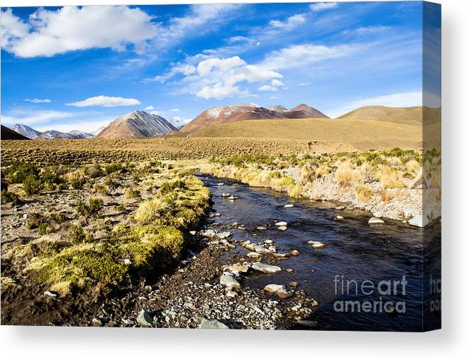 Altiplano Canvas Print featuring the photograph Altiplano In Bolivia by Mariusz Prusaczyk