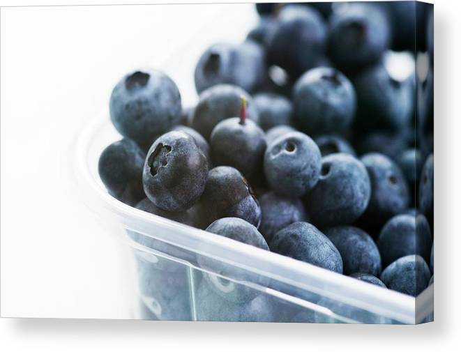 Vaccinium Sp. Canvas Print featuring the photograph Blueberries by Gustoimages/science Photo Library