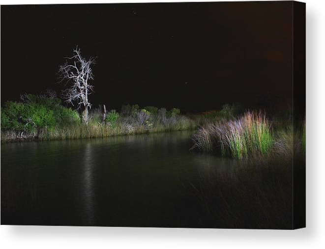 Landscape Canvas Print featuring the photograph Lone Sentinel. by John Henry Baird