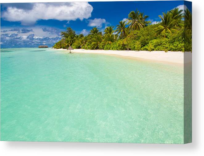 Maldives Paradise Beach Perfect Tropical Island Beautiful Palm Trees And Tropical Beach Moody Blue Sky And Blue Lagoon Luxury Travel Summer