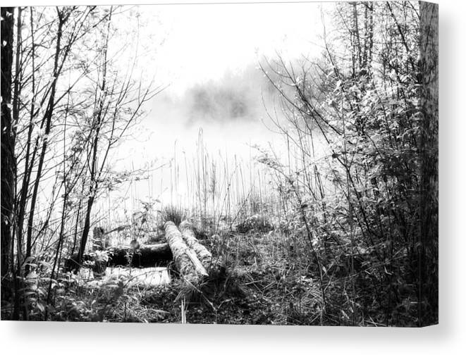 Ice Fog Canvas Print featuring the photograph Natural Ice Fog by Yevgeni Kacnelson