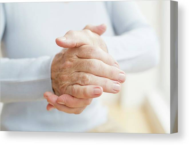 Indoors Canvas Print featuring the photograph Senior Woman's Hands by Science Photo Library