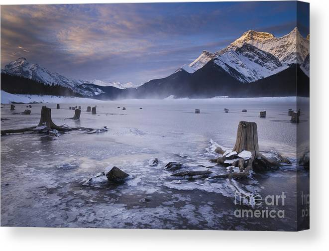 Ice Canvas Print featuring the photograph Stumps At Spray Lakes by Ginevre Smith