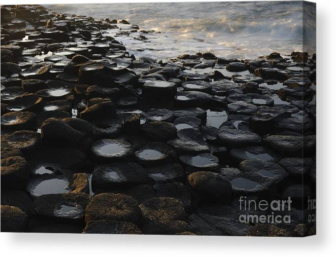 Landscape Canvas Print featuring the photograph The Giants Causeway by John Shaw