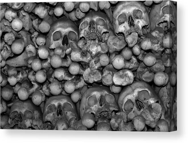 Human Canvas Print featuring the photograph Human Bones. by Fernando Barozza