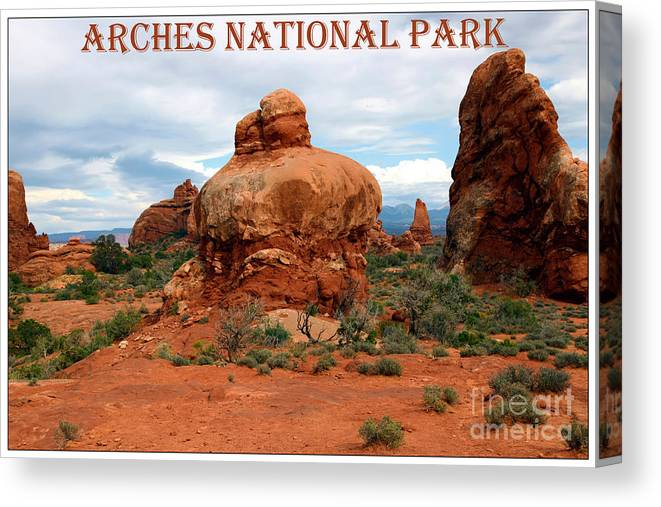 Arches Canvas Print featuring the photograph Arches National Park by Sophie Vigneault