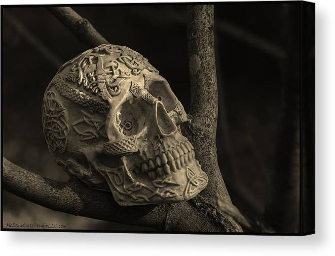 Usa Canvas Print featuring the photograph Celtic Skulls Symbolic Pathway To The Other World by LeeAnn McLaneGoetz McLaneGoetzStudioLLCcom