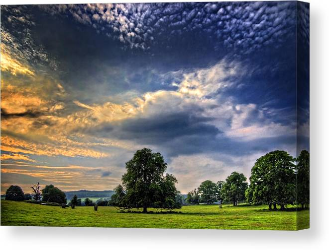 Meadow Canvas Print featuring the photograph A Welsh Meadow by Meirion Matthias
