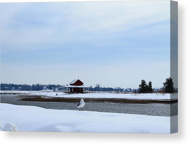 Guilford Canvas Print featuring the photograph All Alone by Catie Canetti