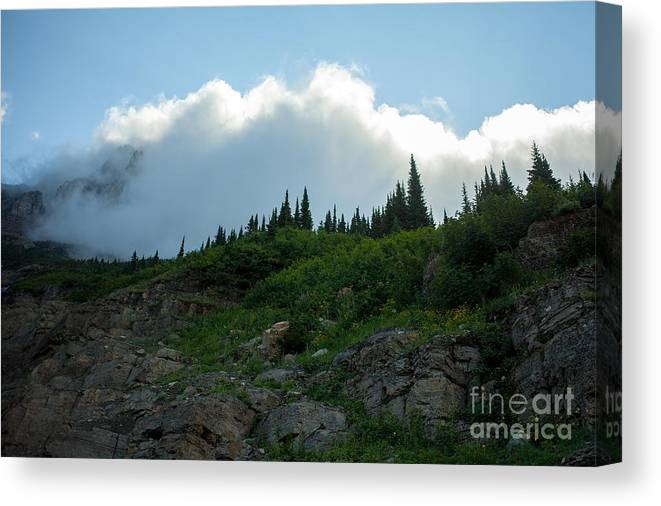 Going To The Sun Road Canvas Print featuring the photograph Along Going To The Sun Road by Natural Focal Point Photography