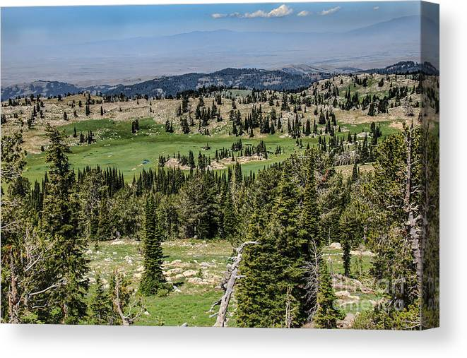 Southwest Idaho Canvas Print featuring the photograph Alpine View by Robert Bales