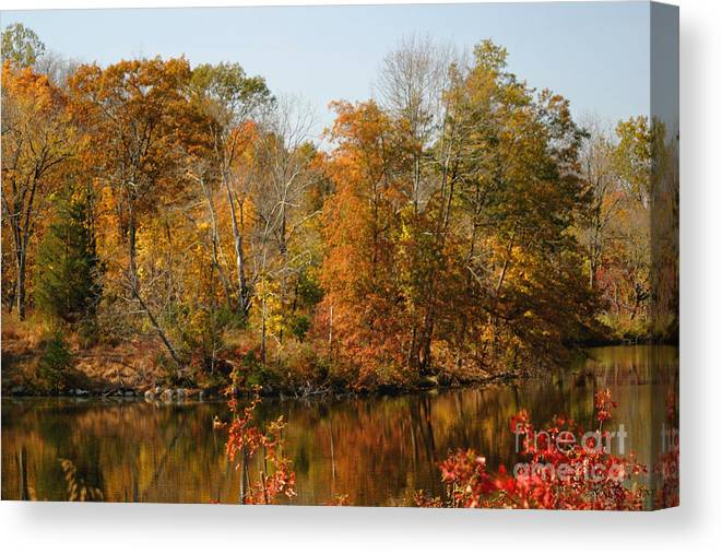 Autumn Canvas Print featuring the photograph Amber Days by Living Color Photography Lorraine Lynch