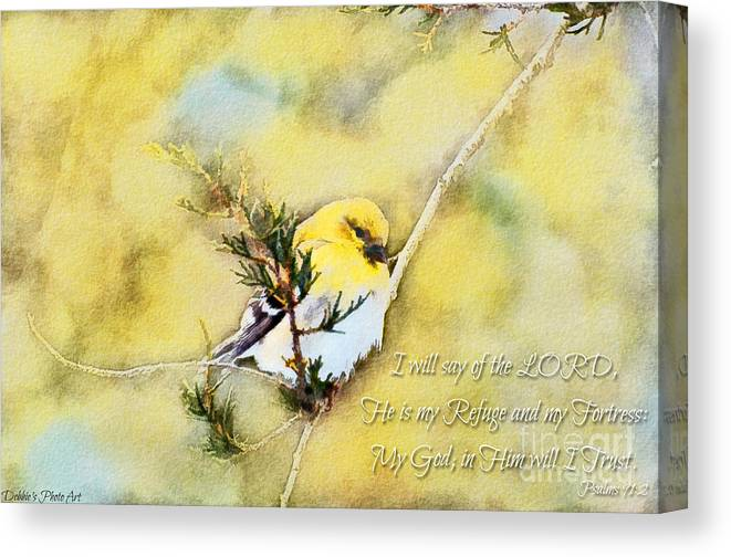 Branch Canvas Print featuring the photograph American Goldfinch On A Cedar Twig With Digital Paint And Verse by Debbie Portwood