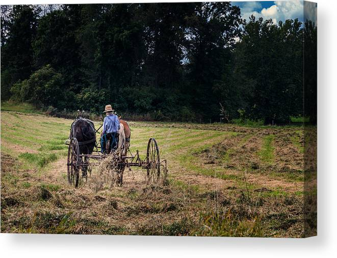 Holmes County Canvas Print featuring the photograph Amish Farming by Tom Mc Nemar