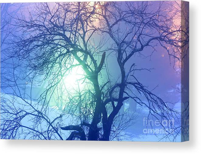 Winter Canvas Print featuring the photograph Apple Tree In Winter Fog by Thomas R Fletcher