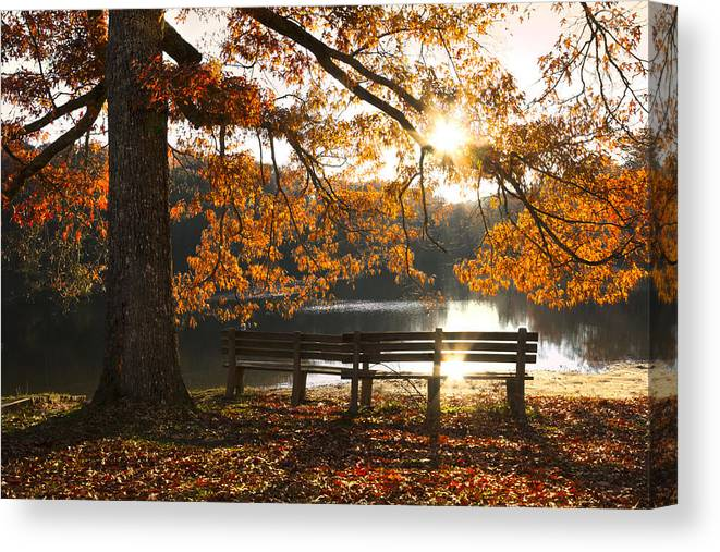 Appalachia Canvas Print featuring the photograph Autumn Beauty by Debra and Dave Vanderlaan