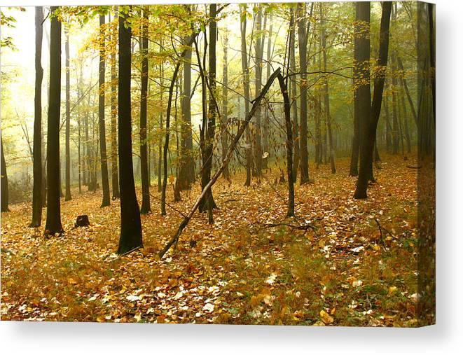 Landscape Canvas Print featuring the photograph Autumn II by Irimia Alex - Adrian