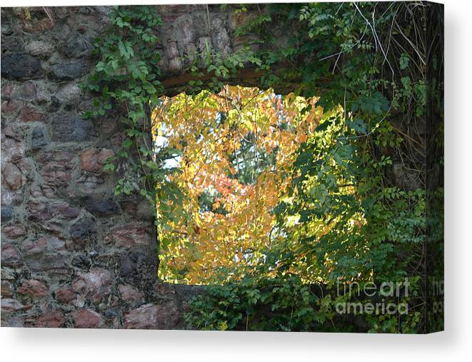Autumn Canvas Print featuring the photograph Autumn Naturally Framed by Living Color Photography Lorraine Lynch