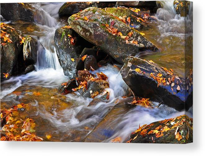 Autumn Canvas Print featuring the photograph Autumn Stream North Georgia by Bruce Gourley