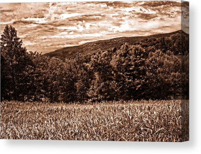 Landscape Canvas Print featuring the photograph Beautiful View by Madeline Ellis