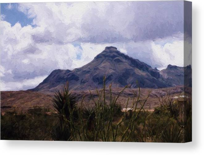 Mountains Canvas Print featuring the photograph Big Bend National Park by Shannon Story