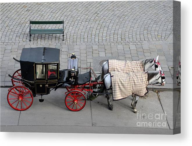 Carriage Canvas Print featuring the photograph Black And Red Horse Carriage - Vienna Austria by Imran Ahmed