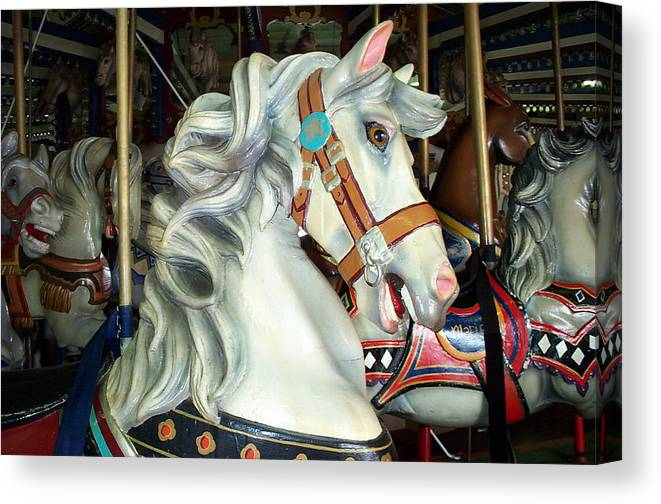 Carousel Canvas Print featuring the photograph Bob by Barbara McDevitt