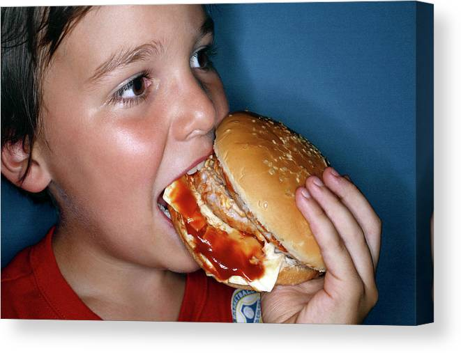 Hamburger Canvas Print featuring the photograph Boy Eating Cheeseburger by Mauro Fermariello/science Photo Library