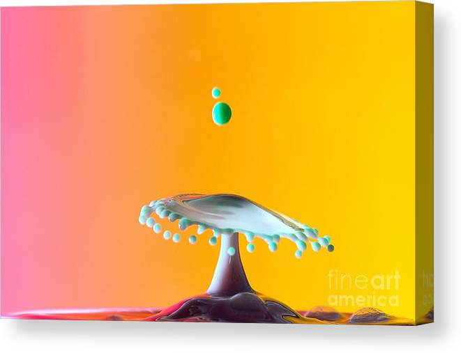 Water And Or Milk Collision Photography. Canvas Print featuring the photograph Break Away by Ken McCormick