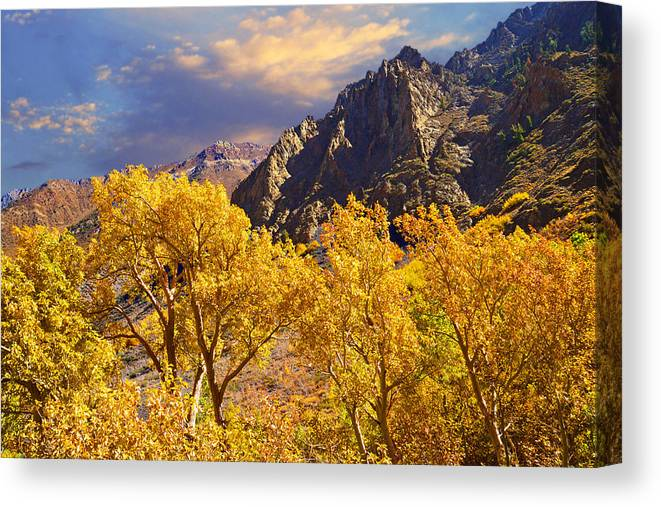 Sunset Canvas Print featuring the photograph California Gold by Lynn Bauer