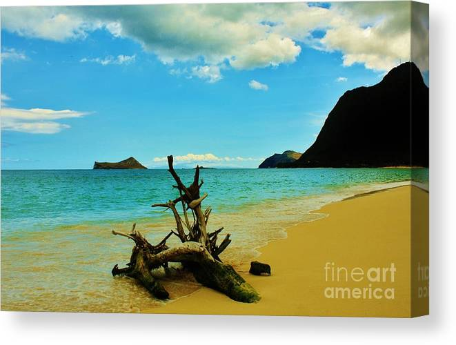 Beach Canvas Print featuring the photograph Calm And Quiet Morning by Craig Wood