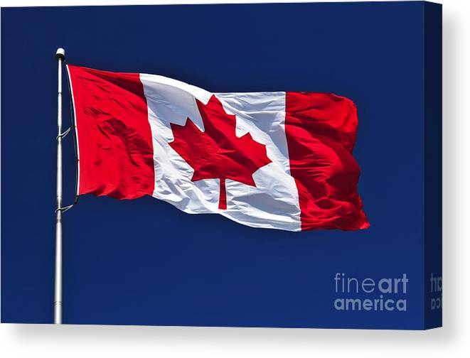 Canadian Flag Canvas Print Canvas Art By Elena Elisseeva