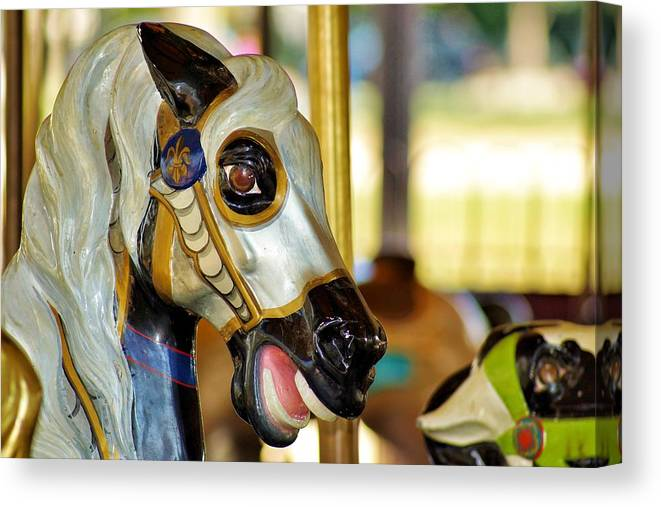 Smithsonian Carousel Canvas Print featuring the photograph Carousel Horse 2 by Jean Goodwin Brooks