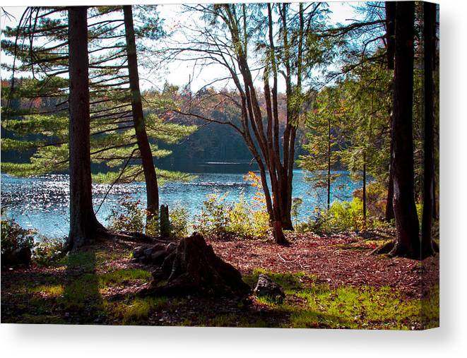 Adirondack's Canvas Print featuring the photograph Cary Lake In The Fall by David Patterson